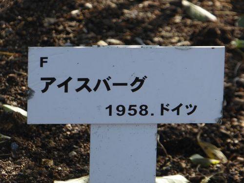 P1220765.jpg