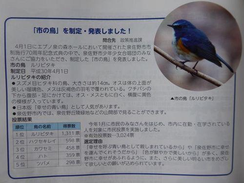 P1250369.jpg