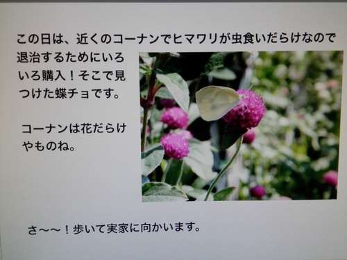IMG_20180710_193439.jpg